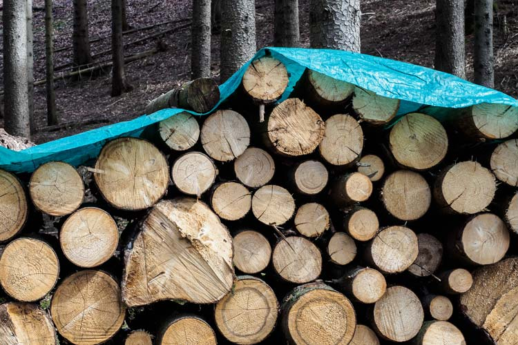 Firewood Covered Tarp
