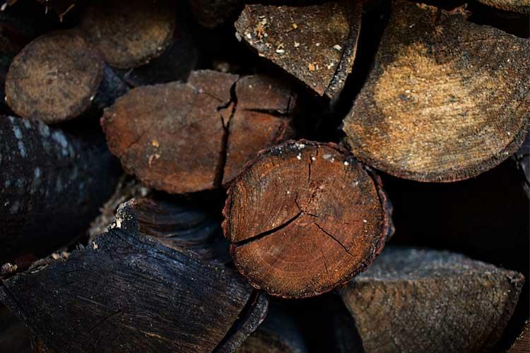 High moisture content firewood